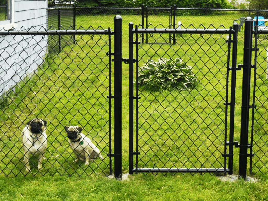 Picture of: Chainlink Fence Installations Premium Fence Company