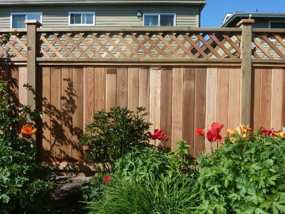 Lattice Top Cedar Fencing Vancouver, BC